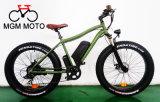 500W--1000W Big Power 26′ Fat Tire Mountain E Bike