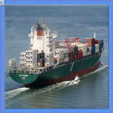 Sea Freight Fromtianjin to Sydney / Adelaide