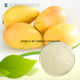 Natural 95% Mangiferin Mango Extract for Anti Cancer Applications