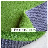 Pretty Looks Artificial Grass for Garden