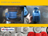 Professional Butterfly Valve QA/ QC Inspection Service