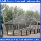 Stainless Steel Wire Rope Mesh for Zoo Mesh