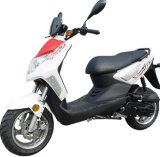 Sanyou EEC 50CC-150CC Gasoline Scooter (SY50QT-9(TWINKLE))