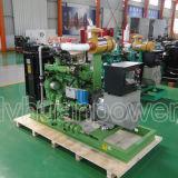 20kw Biogas Generating Units