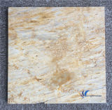 Polished Natural Beige Travertine Marble