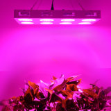 LED Growing Lamp for Greenhouse Hemp LED Grow Light