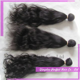 Purple Wet and Wavy Remy Hair Brazilian Human Hair Weave