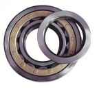 High Quality Cylinderical Roller Bearing (Nj2205)