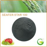 Seaweed Fertilizer Flake /Powder (ALGA WS100)
