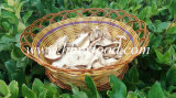 Dried Porcini Mushroom Competitive Good Price
