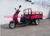 125cc Small Cargo Tricycle with Spare Tire (TR-27)