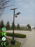 Factory Price 4m 12W Solar LED Garden Light