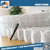High Quality Pocket Spring Especially for Pillow and Sofa Cushion, Softest Like Foam