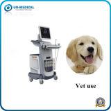 Vet All Digital Type B Doppler Ultrasound Diagnosis equipment