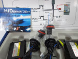 DC 24V 55W H11 HID Lamp (blue and blak wire)