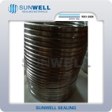 Hot Sale Oval Metal Ring Type Joint Gasket (RS2-RA)