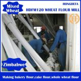60-80t Wheat Flour Plant in Brazil