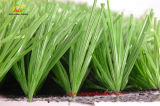 Eco Sports Artificial Grass, Indoor Outdoor Soccer Synthetic Grass