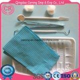 Disposable Sterile Dental Examination Kit