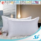 Home/Hotel Duck Down Pillow (SFM-15-157)