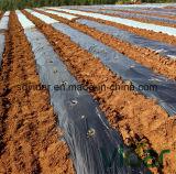 Plastic Mulching Film with Herbicide