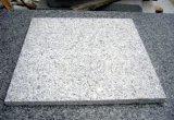 Polished G623 White Granite Floor Tiles