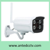 Outdoor WiFi P2p IP Camera with Audio Night Vision