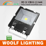 China 150W COB Outdoor Waterproof IP65 LED Floodlight