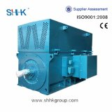 High-Voltage 3 Phase Motor Water Cooled
