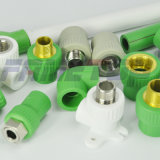 PPR Fitting for Hot and Cold Water with Competitve Price