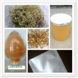 GMP White Willow Bark Extract OEM