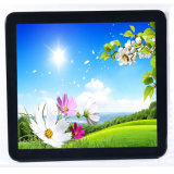 High Brightness 17 Inch Open Frame Capacitive TFT Touch Monitor