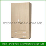 Two Doors Wardrobe Bedroom Cabinet Wardrobe