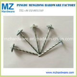 Manufacturer Galvanized Roofing Nails with Umbrella Head