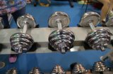 Electroplate Dumbbells Gym Equipment Fitness Equipment