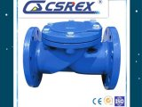 OEM Flanged Ends Pn16 Ball Check Valve.