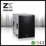 Professiona S118h Audio Sound Speaker Equipment Stage System