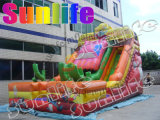 Inflatable Car Slide, Water Slide, Inflatable Toy