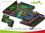 Amusement Park Equipment for Kids, Classic Castle Style Playground (LE-GB003)