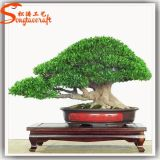 Indoor Artificial Fiberglass Pine Bonsai Topiary Frame Plant Sale