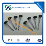 Umbrella Head Roofing Nails (ADS-RN-01)