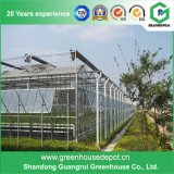 Glass Greenhouse Kits/ Fruit and Vegetable Greenhouse/ Glass Greenhouse