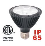 LED PAR Light (PAR20 PAR30 PAR38)