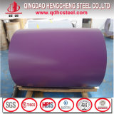 Prepainted Galvanized Steel Color Coil for Roofing