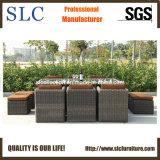 Rattan Furniture/PE Rattan Table Set/ Popular Outdoor Table Set (SC-A7199-H)
