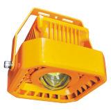 Atex LED Hazardous and Specialty Lighting