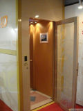 Fjzy-High Quality and Safety Home Lift Fjs-1621