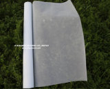 White Color 120G/M2 18X16 Mesh Good Quality Invisible Window Screen