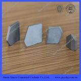 Good Price Coal Mining Inserts K10 Tungsten Carbide Tips