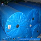 Blue PE Coated Tarp Rolls in Different Weights and Sizes